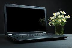 Laptop und Kamille Lizenzfreies Stockbild