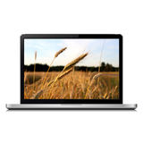 Laptop with wheat field on screen Stock Photos