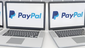 Laptops with PayPal logo on the screen. Computer technology conceptual editorial 4K clip, seamless loop. Laptops with PayPal logo on the screen. Computer stock video