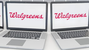 Laptops with Walgreens logo on the screen. Computer technology conceptual editorial 4K clip, seamless loop. Laptops with Walgreens logo on the screen. Computer stock video