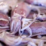 Lapu-Lapu, rode snapper en tonijn, zeevruchten op markt Stock Fotografie