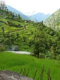 Lapubesi - Nepali village. Little village on the Manaslu trekking - Nepal Stock Photo