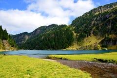 Laqo Lagorai nelle alpi della dolomia, Val di Fiemme, Tirolo del sud, Italia Immagini Stock Libere da Diritti