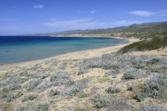 Lara Bay Turtle Beach Stock Images