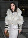 Lara Bohinc Royalty Free Stock Photo