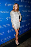 Lara Spencer. NEW YORK-NOV 21; Lifestyle anchor Lara Spencer attends the American Museum of Natural History's 2013 Museum Gala at American Museum of Natural Royalty Free Stock Images