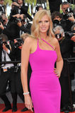 Lara Stone. CANNES, FRANCE - MAY 21, 2014: Lara Stone at the gala premiere of The Search at the 67th Festival de Cannes Stock Photo