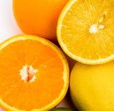 Laranja alaranjada tropical suculenta e limão amarelo imagem de stock