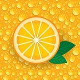 A laranja com verde sae em um fundo de gotas alaranjadas Vetor Fotografia de Stock