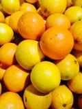 Laranja da tangerina fotos de stock royalty free