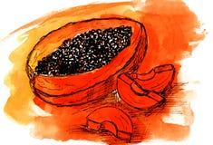 Laranja do desenho de esboço da aquarela da papaia ilustração do vetor