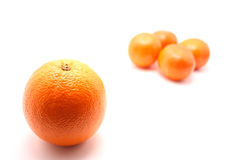 Laranja e os mandarino especiais Imagem de Stock