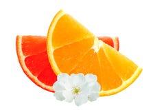 Laranja fresca e fatias e flores da toranja isoladas no branco Fotos de Stock Royalty Free