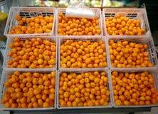A laranja pequena é vendida nos supermercados fotografia de stock royalty free