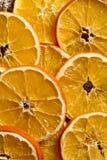 A laranja secada corta o fundo Imagem de Stock