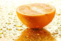 Laranja suculenta 2 Fotografia de Stock