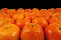 Laranjas Fotografia de Stock