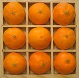 Laranjas foto de stock royalty free