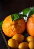 Laranjas com tangerins no close-up Fotografia de Stock Royalty Free