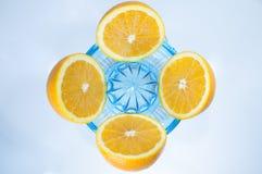 Laranjas cortadas em um espremedor de frutas Fotos de Stock