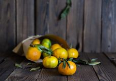 Laranjas das tangerinas, os mandarino, clementina, citrinas imagens de stock