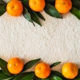 Laranjas das tangerinas, os mandarino, clementina, citrinas com folhas, fundo, espaço da cópia foto de stock