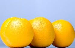 Laranjas deliciosas suculentas maduras frescas Imagens de Stock Royalty Free