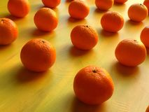 Laranjas e mandarino Imagem de Stock Royalty Free