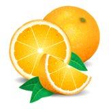 Laranjas frescas fruto, partes de laranja Laranjas realísticas, vetor Foto de Stock