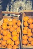 Laranjas frescas na caixa de madeira Fotografia de Stock