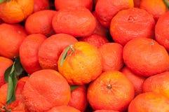 laranjas híbridas no mercado fotos de stock