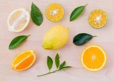Laranjas misturadas dos citrinos Foto de Stock