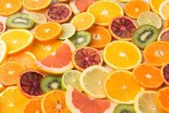 Laranjas, laranjas pigmentadas, fatias da tangerina no círculo fotos de stock royalty free