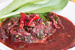 Larb猪肉草本和沙拉与血液调味,泰国食物 免版税库存照片