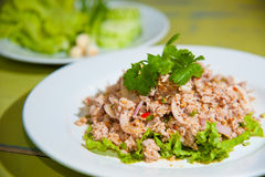 Larb chicken salad. Royalty Free Stock Photo