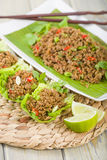 Larb - Lao Minced Beef Salad Royalty Free Stock Photography