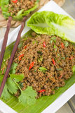 Larb - Lao Minced Beef Salad Royalty Free Stock Photo