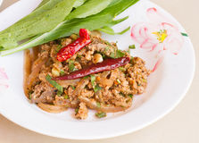 Larb pork herb and salad ,thai food Royalty Free Stock Photography