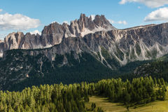 Larch tree forest at Croda da Lago in Dolomites Royalty Free Stock Image