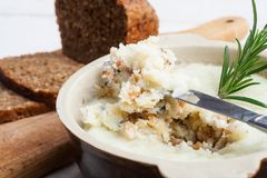 Lard with cracklings, garlic and apple Stock Photo