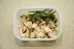 Lardo salato Fotografia Stock