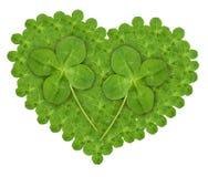 Lareira das Quarto-folhas do verde Imagens de Stock
