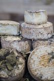 Large aged cheese loafs stock images