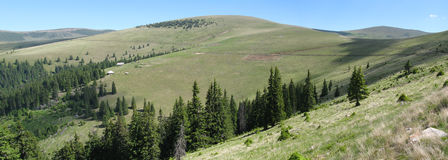Large alpine meadows. From Sureanu Mountains Royalty Free Stock Photos