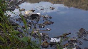 A large amount of trash polluting our waters stock video