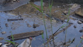 A large amount of trash polluting our waters stock video footage