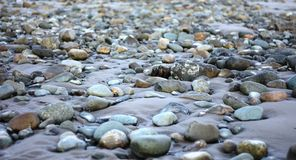 Large amount of Wet rocks on a sandy beach Royalty Free Stock Photo