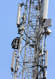 Large antenna for cell phone signals on the trellis Stock Photo