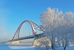 A large arch bridge. In the cold winter Royalty Free Stock Image