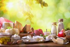Large assortment of artisanal dairy products in nature royalty free stock photography